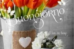 Buongiorno-e-Buona-Domenica-4710