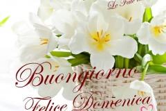Immagini-belle-buona-domenica-buongiorno-whatsapp-481