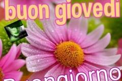 Buongiorno-GiovedC3AC-Immagini-belle-per-Facebook-Whatsapp-270