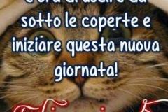 Buongiorno-GiovedC3AC-per-Facebook-e-Whatsapp-268364