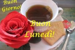 rosa e caffè buongiorno
