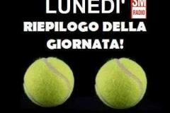 palle da tennis immagine divertente del lunedì