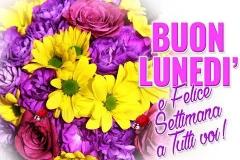 fiori bella immagine lunedì
