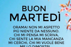 Buon-martedi-002-600x893