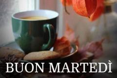 Buon-martedi-005-678x960