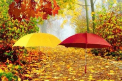 colori-aurtunno-44_n
