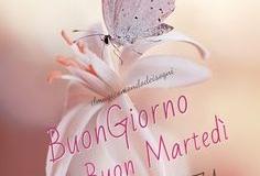 belle-frasi-buongiorno-buon-martedC3AC-da-condividere-grati-scaricare-facebook-e-whatsapp-dolci-carine-218290