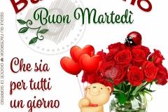 martedi_058