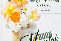 5acda04f273aa_fiori-gialli-mercoledC3AC