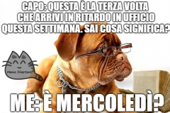meme-mercoledC3AC-lavoro