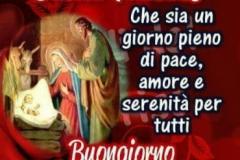 00tiypjywt-25-dicembre-santo-natale-che-sia-un-giorno-pieno-di-pace-amore-e-serenita-per-tutti_a