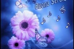 Belle-immagini-per-whatsapp-Buonasera-351
