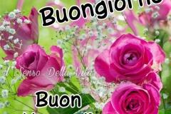 VenerdC3AC-Whatsapp-Facebook-Buongiorno-40