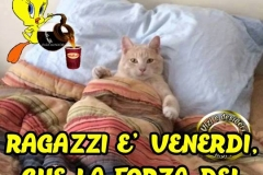 venerdi_017