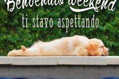 frasi-buon-sabato-buon-weekend-week-end